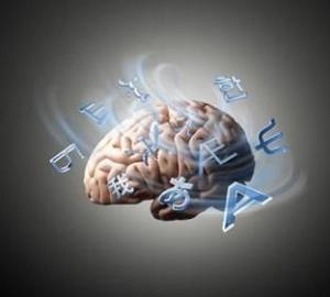Neurociências e os trabalhos interventivos: uma abordagem interdisciplinar com a psicopedagogia 1