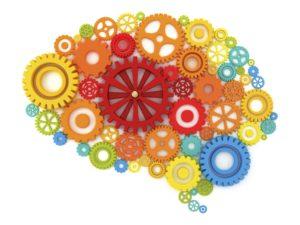 Tópicos revelantes em Neuropedagogia -Parte 01 2