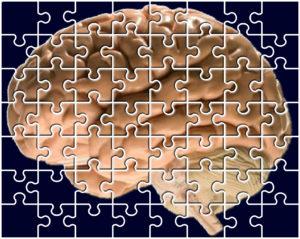 Tópicos revelantes em Neuropedagogia (Parte 02) 4